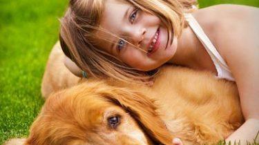 Schattige_hond.jpg