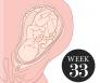 33 weken zwanger