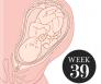 39 weken zwanger