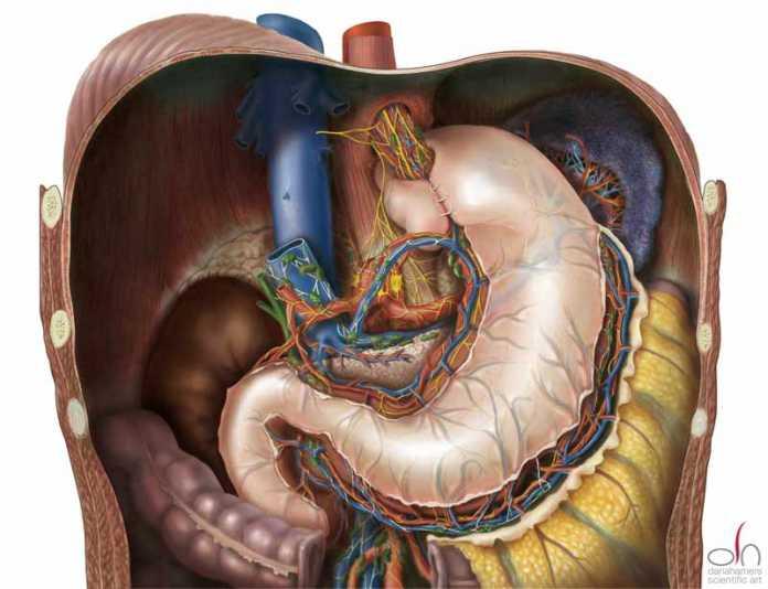 Maagzuur tijdens zwangerschap