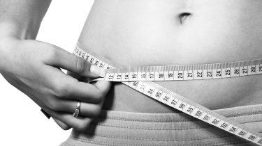 Mentale Dieet Plan ervaringen review