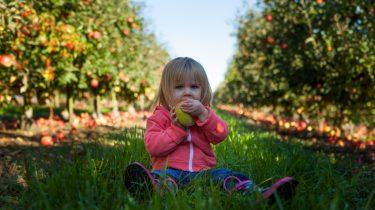 fruit groente dagelijks kind