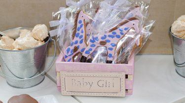 geboorte cadeau meisje giraffes