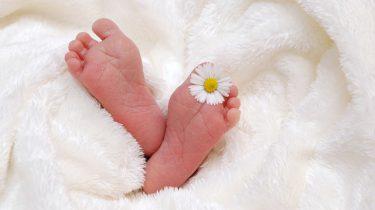 baby voetjes bloem