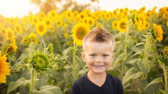 peuter in de zonnebloemen