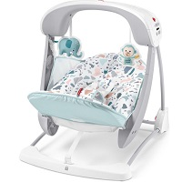Fisher Price Pacific Pebble Draagbaar Schommelstoeltje